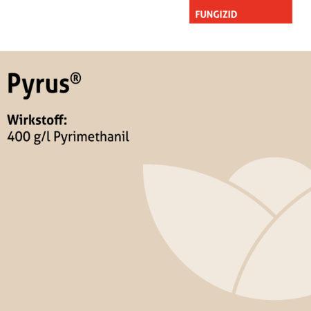 Pyrus®