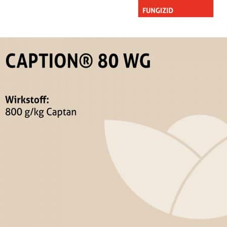 CAPTION® 80 WG