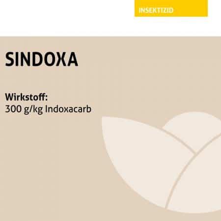 SINDOXA