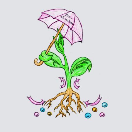 Biostimulanzien – eine sinnvolle Ergänzung?!