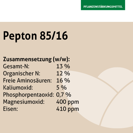Pepton 85/16